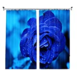 ZZHL Curtains Curtains,Hooks Rings Blackout Set Thermal Insulated Window Treatment Solid Eyelet for Bedroom 2 Panels Blue Flower (Size : 1x2.41m)