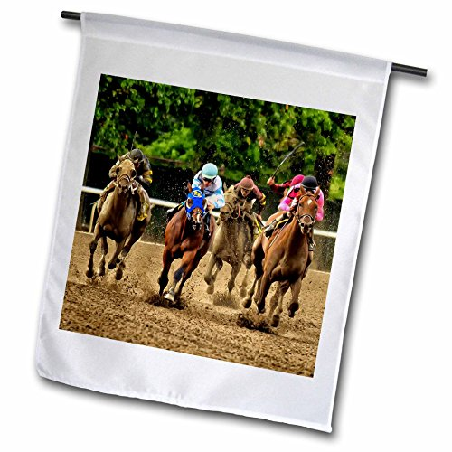 8 Mm Line Finish - 3dRose fl_98372_1 Horses and Jockeys Racing to Finish Line, Mud Flying Garden Flag, 12 by 18-Inch