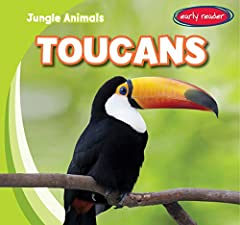 Describes the physical characteristics, behavior, and eating habits of toucans.