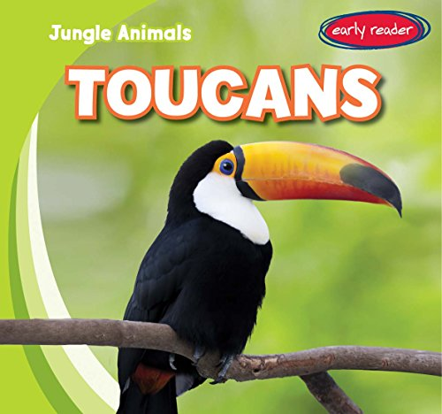 Toucans (Jungle Animals)