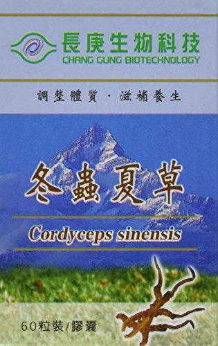 Cordyceps Sinensis Capsules - SGS Certified, cGMP Certified, Guaranteed Authentic, 99.6% rDNA Proven Genuine - 60 capsules per bottle, 350mg per capsule - Made in Taiwan