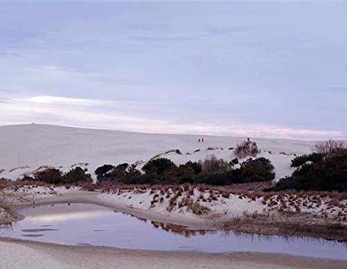 Photo: Jockey's Ridge State Park,North Carolina,NC,Sand Dune,Nags Head,North - Pictures Head Nags