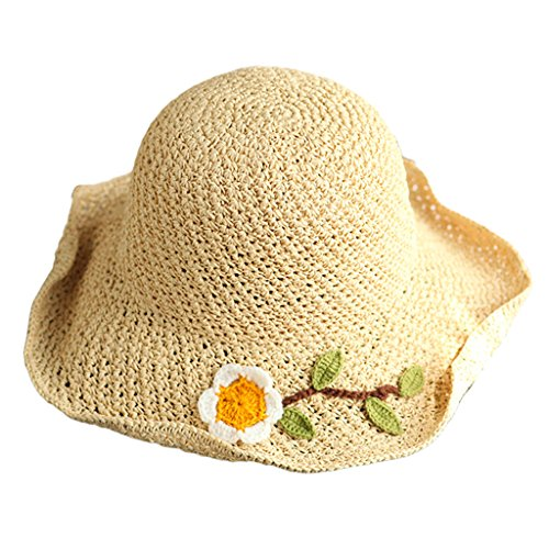 Fine Edge Trendy (Floppy Sun Hat,Sun Flower Fine Crochet Straw Hat, Summer Girls Collapsible Fisherman Hat, Leisure Travel Visor Hat (Color : Beige))