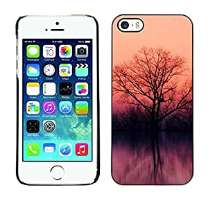 LECELL -- Funda protectora / Cubierta / Piel For Apple iPhone 5 / 5S -- Lake trees --