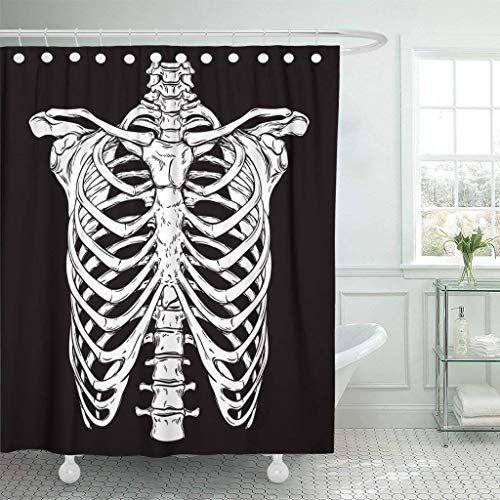 Abaysto Skeleton Line Anatomically Correct Human Ribcage White Over Black Halloween Costume Rib Cage Hand Drawn Spine Polyester Fabric Shower Curtain Sets with Hooks Waterproof Mildew Bathroom Decor -