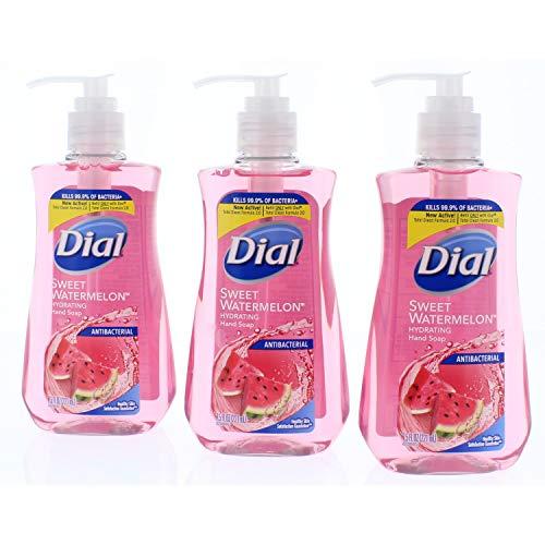 dial aloe liquid soap - 6