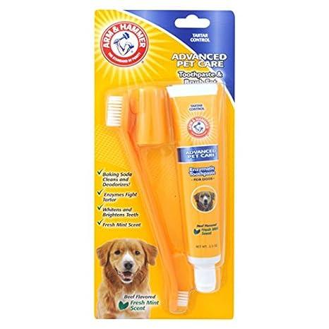 Arm & Hammer Pasta de dientes y cepillo Set: Amazon.es: Jardín
