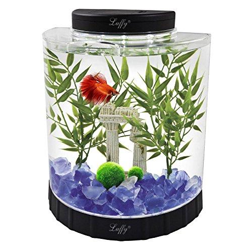 2 luffy giant marimo moss balls bring home japan 39 s for Petit aquarium original