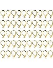 Leverback Earwires, Brass Earring Hooks Ear Wires Fish Hooks Elegant voor oorbellen Ontwerpen voor het maken van sieraden