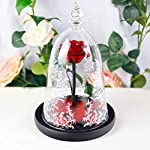 DDSKY-Enchanted-Rose-Beauty-and-The-Beast-Handmade-Preserved-Rose-with-LED-Light-in-Glass-Dome-on-Wood-Base-100-Real-Rose-for-Christmas-Valentines-Day-Red