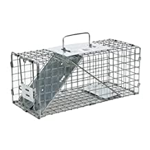 Havahart 1077 Small Professional Style One-Door Animal Trap for Squirrels, Rabbits, Skunks, and Minks