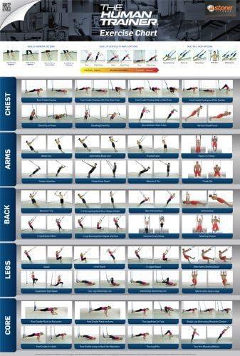 The Human Trainer - Poster | Ejercicios gimnasio entrenamiento suspensión Poster | Peso entrenamientos | Entrenamiento en suspensión