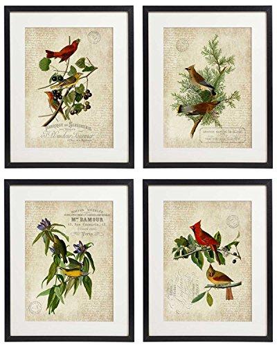 (IDIOPIX Vintage Bird & Botanical Home Decor Wall Art Print No.1 Set of 4 Prints)