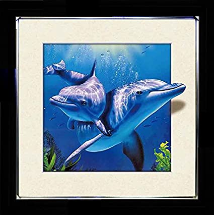 5D / 3D + Lenticular Framed 3d Picture Poster Artwork Wall Decor Holographic Pics Optical Illusion