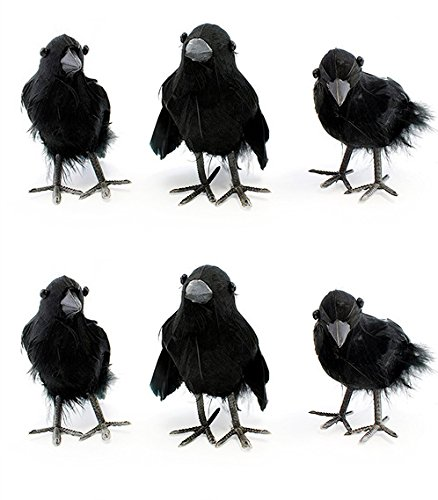 "Cornucopia Brands 4"" Tall Realistic Feathered Black Crows (6 Pack); Imitation Artificial Birds/Ravens for Halloween, Haunted House & Fall Seasonal Displays for $<!--$19.99-->"