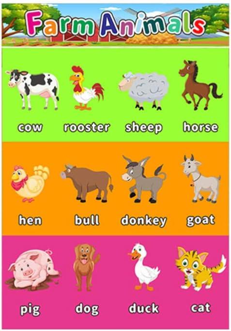 Supvox 6 Piezas de P/ósters Educativos Tempranos Que Aprenden Divertidos Gr/áficos Creativos del Alfabeto Herramientas de Ense/ñanza N/úmeros P/ósters para Ni/ños Preescolares