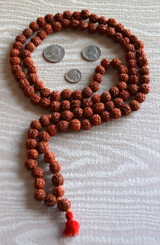 BLESSED & ENERGIZED 5 FACET (5 MUKHI) KING RUD…