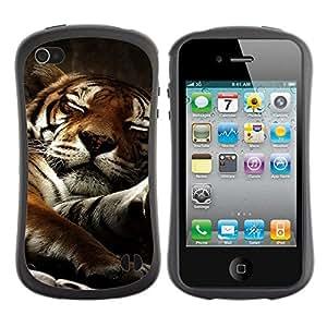 "Pulsar iFace Series Tpu silicona Carcasa Funda Case para Apple iPhone 4 / iPhone 4S , Tigre soñoliento del gato grande lindo Naturaleza Animal"""