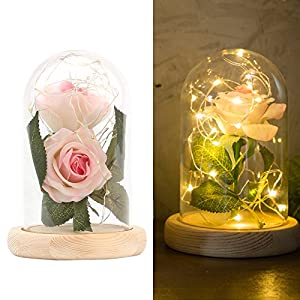 "ALLOMN Beauty and The Beast Red Silk Rose in Glass Dome, 13"" Preserved Flowers LED Light with Fallen Petals on a Wooden Base, Gift for Valentine's Day Anniversary Wedding Birthday (Pink) 55"