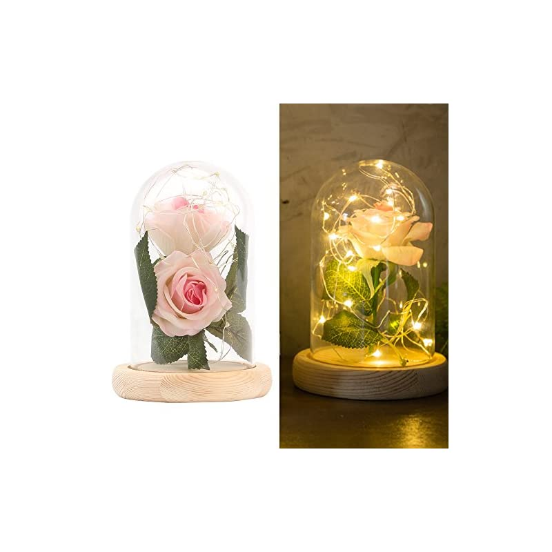 """silk flower arrangements allomn beauty and the beast red silk rose in glass dome, 13"""" preserved flowers led light with fallen petals on a wooden base, gift for valentine's day anniversary wedding birthday (pink)"""
