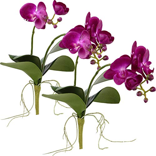 Rinlong Artificial Moth Orchid Purple 2pcs Silk Phalaenopsis Orchid Flowers Spray with Leaves Buds Root for Bonsai Floral Arrangement Indoor Decor