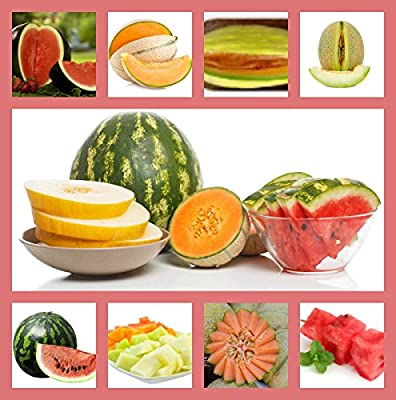 Heirloom Fruit Seeds-Heirloom Non Hybrid- NO GMO Real Survival Seeds. Honeydew Green Melon, Banana Melon,Honey Rock Cantaloupe,Watermelon Crimson Sweet,Sugar Baby Watermelon,Hales Best Jumbo Melon.
