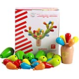 Kennedy Children Wooden Balancing Cactus Inserted Removable Building Block Toy Puzzle Assembling Toys For Toddler Kids Preschool Children(Multicolor)