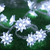 Flowers Battery Operated Fairy Lights 10M 80 LED 2 Modes Lotus Decorative String Lighting for Indoor Outdoor Use(Pure White)