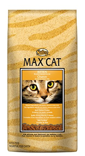 Nutro MAX CAT Kitten Dry Cat Food, Roasted Chicken, 3 lbs.