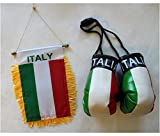 Italy - Boxing Glove and Window Hanger Combo by Flagline