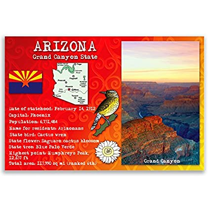 Amazon Arizona State Facts Postcard Set Of 20 Identical