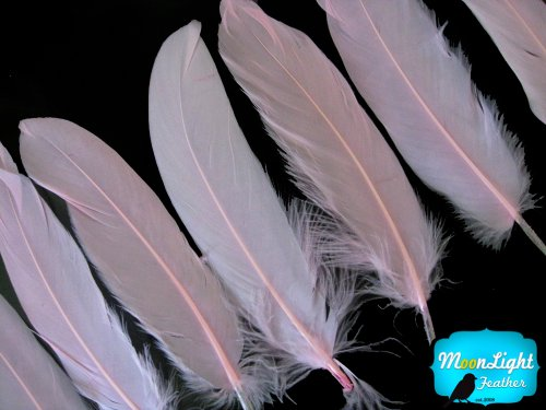 Moonlight Feather | 1 Pack - Baby Pink Goose Satinettes Loose Feathers 0.3 Oz. Craft, Party, Jewelry, Costume Supplier -