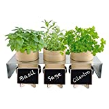 Mini Chalkboard Place Card Signs with Chalk and