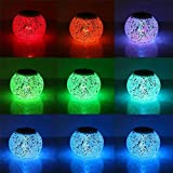 Color Changing Solar Powered Glass Ball Garden