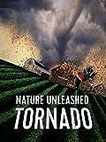 Nature Unleashed%3A Tornado