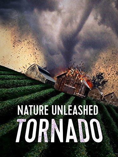 2005 Team Jersey - Nature Unleashed: Tornado