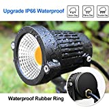 ZUCKEO 5W LED Landscape Lights 12V 24V Garden