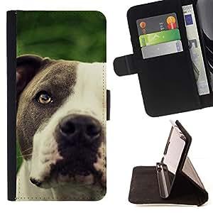 Momo Phone Case / Flip Funda de Cuero Case Cover - Pitbull friendly Negro hocico del perro blanco; - HTC One M8