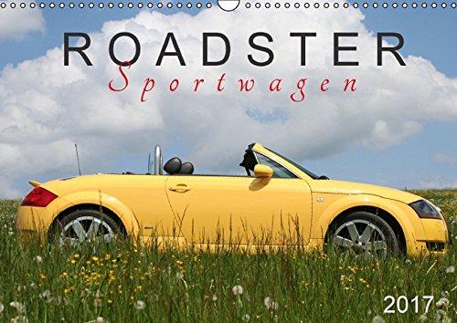 Roadster Sportwagen (Wandkalender 2017 DIN A3 quer): TT 8N – ein Modell in verschiedenen Lackierungen (Monatskalender, 14 Seiten) (CALVENDO Mobilitaet)