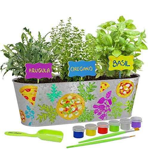 Dan&Darci Paint & Plant Pizza Herb Growing Kit - Grow Basil, Oregano, & Arugula Herbs Garden : Includes Everything Needed to Paint and Grow - Great STEM Gift for Children (Childrens Seed Kit)