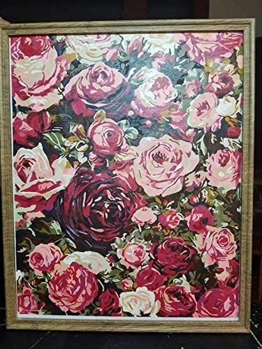 DIY Acrylic Paint by Numbers Kits for Adults Kids Painting by Number On Canvas Birthday Wedding Christmas Holiday Present,20x16Inch Red Rose