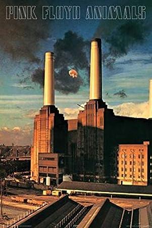 Amazonde Pink Floyd Animals Poster 60 96 X 91 44 Cm