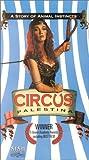 Circus Palestina [VHS]
