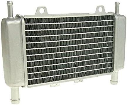 /Piaggio Zip C25 DNA C27 Gilera Runner C14/C36 Radiateur Refroidisseur refroidissement /à eau/