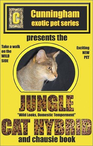 Jungle Cat Hybrid: A Whole New Breed of Cat