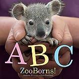 ABC ZooBorns!, Andrew Bleiman and Chris Eastland, 1442473762