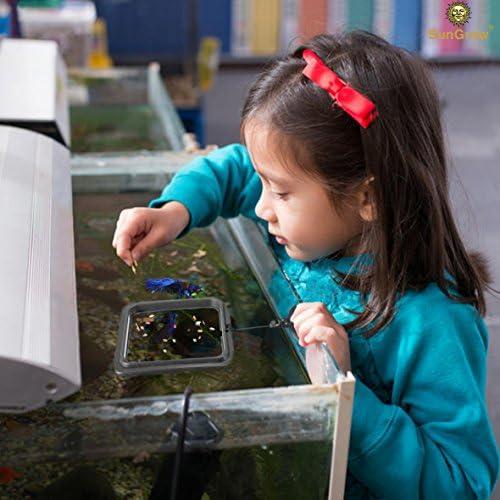 Anillo de alimentación Betta práctico cuadrado flotante para alimentos peces dorados y otros peces más pequeños 2