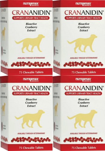 nutramax Crananidin Chewable Tablets for Dogs 300ct (4 x ...