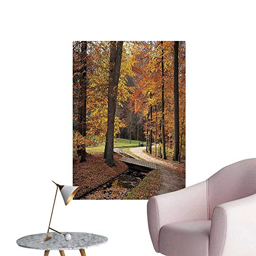 (Wall Decorative Gloomy Day Forest Path with Leafless Trees Art Photograph Marigold Amber and Seal Pictures Wall Art Painting,24