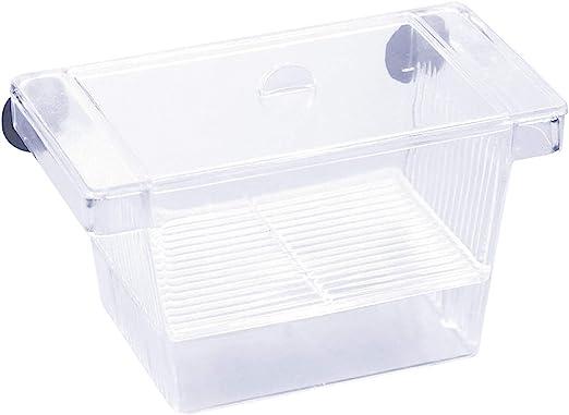 Kissral Incubadora para Peces Caja de Cría Peceras Pequeña ...